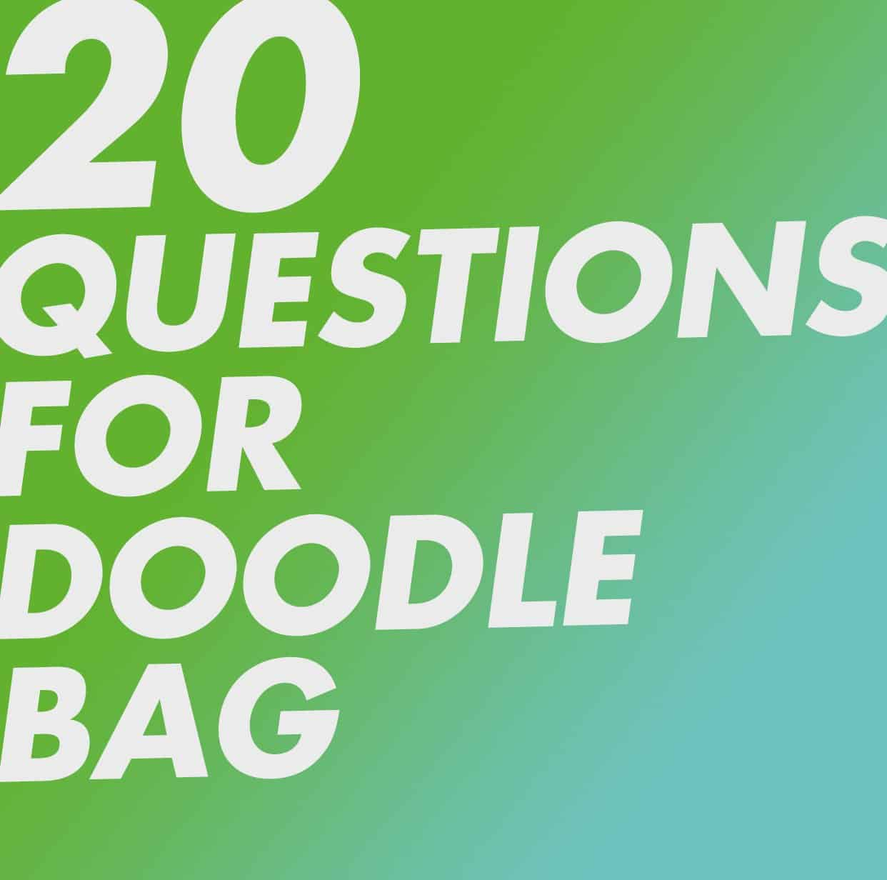 20 Questions for Doodle Bag