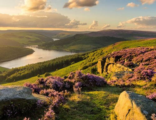 Revealed: UK's Top Green Nature Staycations